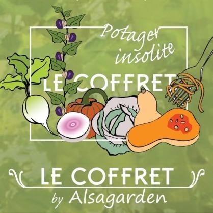 coffret-potager-insolite-10-varietes-rares-et-originales