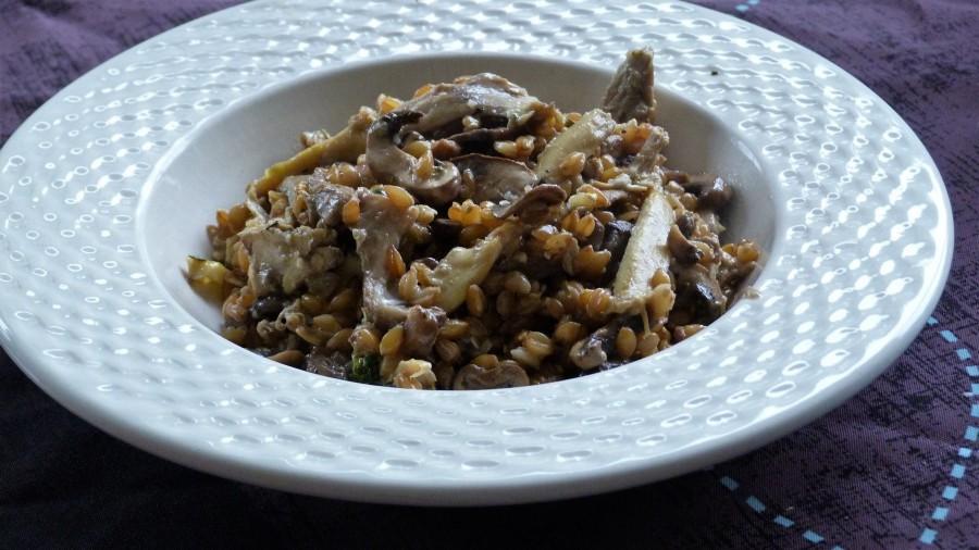 Petit épeautre comme un risotto au poulet, champignons, sauge etgorgonzola